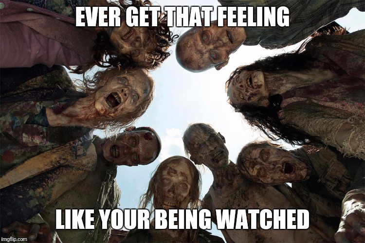 watched and chewed | EVER GET THAT FEELING LIKE YOUR BEING WATCHED | image tagged in watching,paranoia,zombie,walking dead zombie,fear the walking dead | made w/ Imgflip meme maker