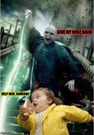 How Voldemort lost his nose | GIVE MY NOSE BACK HELP MEH. SOMEONE | image tagged in memes,harry potter,voldemort,voldermort's nose | made w/ Imgflip meme maker