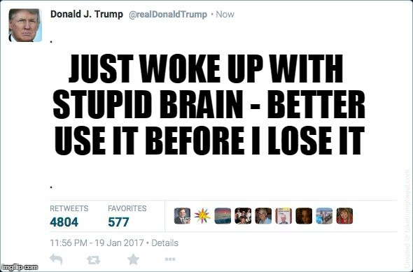 JUST WOKE UP WITH STUPID BRAIN - BETTER USE IT BEFORE I LOSE IT | made w/ Imgflip meme maker