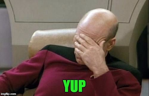 Captain Picard Facepalm Meme | YUP | image tagged in memes,captain picard facepalm | made w/ Imgflip meme maker