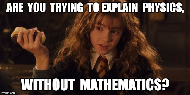 ARE  YOU  TRYING  TO EXPLAIN  PHYSICS, WITHOUT  MATHEMATICS? | image tagged in smug hermione | made w/ Imgflip meme maker