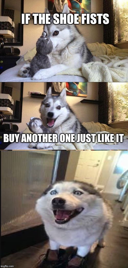 Bad Pun Dog Meme | IF THE SHOE FISTS BUY ANOTHER ONE JUST LIKE IT | image tagged in memes,bad pun dog | made w/ Imgflip meme maker