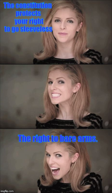 Sorry about this one guys, but I couldn't resist it. | The constitution protects  your right to go sleeveless The right to bare arms. | image tagged in memes,bad pun anna kendrick | made w/ Imgflip meme maker
