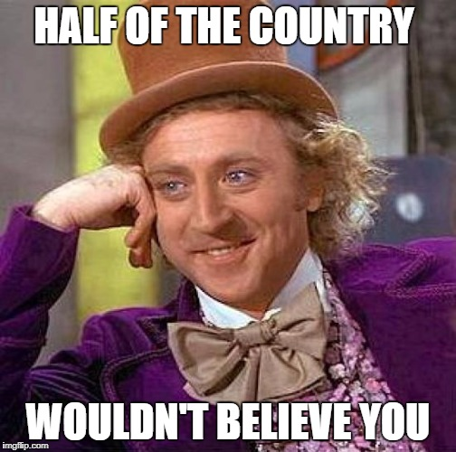Creepy Condescending Wonka Meme | HALF OF THE COUNTRY WOULDN'T BELIEVE YOU | image tagged in memes,creepy condescending wonka | made w/ Imgflip meme maker