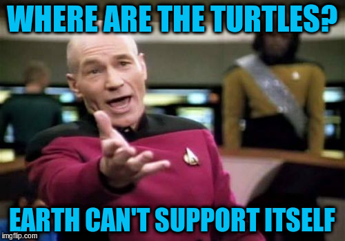 Picard Wtf Meme | WHERE ARE THE TURTLES? EARTH CAN'T SUPPORT ITSELF | image tagged in memes,picard wtf | made w/ Imgflip meme maker