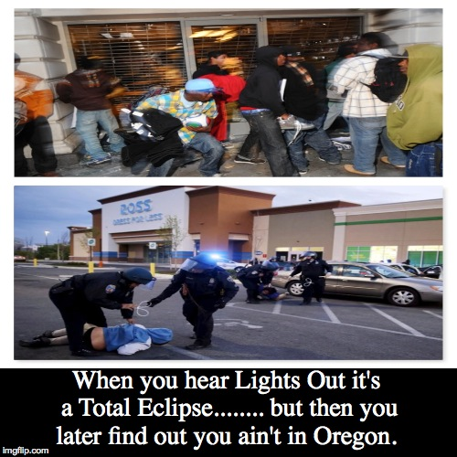 When you hear Lights Out it's a Total Eclipse........ but then you later find out you ain't in Oregon. | image tagged in funny,demotivationals | made w/ Imgflip demotivational maker