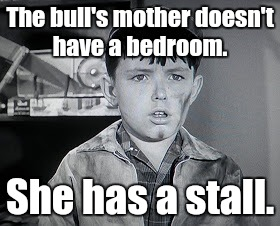 Beaver Cleaver  | The bull's mother doesn't have a bedroom. She has a stall. | image tagged in beaver cleaver | made w/ Imgflip meme maker