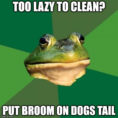 Foul Bachelor Frog Meme | TOO LAZY TO CLEAN? PUT BROOM ON DOGS TAIL | image tagged in memes,foul bachelor frog | made w/ Imgflip meme maker
