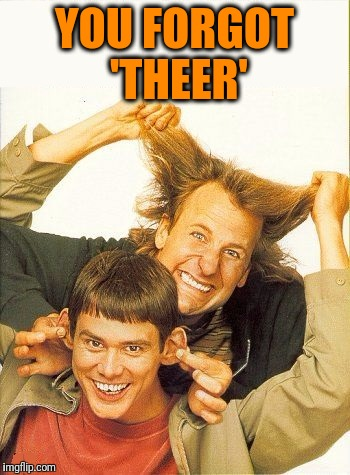 DUMB and dumber | YOU FORGOT 'THEER' | image tagged in dumb and dumber | made w/ Imgflip meme maker