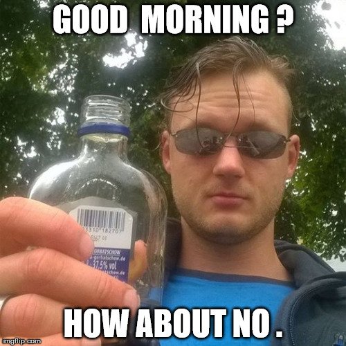 GOOD  MORNING ? HOW ABOUT NO . | image tagged in how about no | made w/ Imgflip meme maker