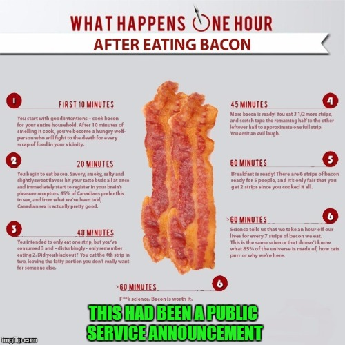 Gotta have my bacon!!! | THIS HAD BEEN A PUBLIC SERVICE ANNOUNCEMENT | image tagged in bacon,memes,one hour,funny,i love bacon,bacon is worth it | made w/ Imgflip meme maker