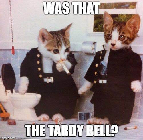 School's Back in Session! | WAS THAT THE TARDY BELL? | image tagged in kittens,cute kittens,back to school | made w/ Imgflip meme maker