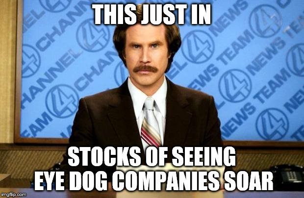 BREAKING NEWS | THIS JUST IN STOCKS OF SEEING EYE DOG COMPANIES SOAR | image tagged in breaking news | made w/ Imgflip meme maker