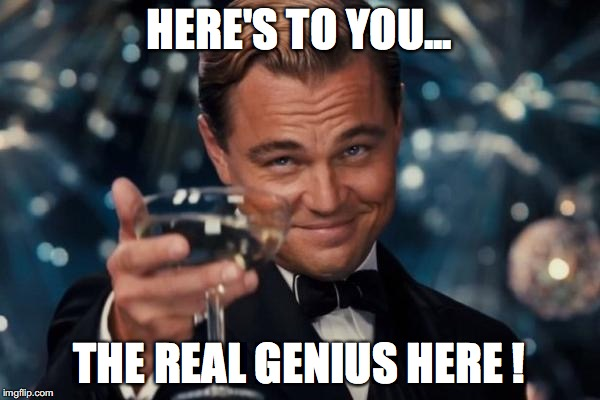 Leonardo Dicaprio Cheers Meme | HERE'S TO YOU... THE REAL GENIUS HERE ! | image tagged in memes,leonardo dicaprio cheers | made w/ Imgflip meme maker