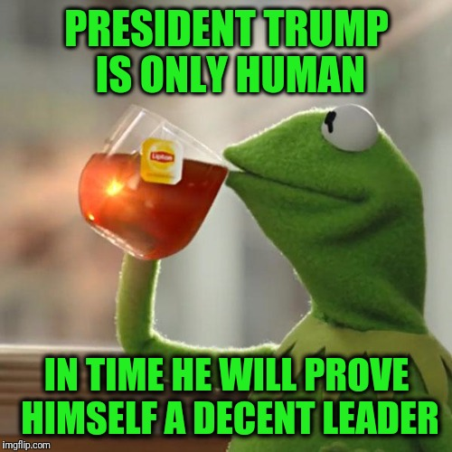 But Thats None Of My Business Meme | PRESIDENT TRUMP IS ONLY HUMAN IN TIME HE WILL PROVE HIMSELF A DECENT LEADER | image tagged in memes,but thats none of my business,kermit the frog | made w/ Imgflip meme maker