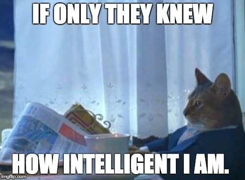 I Should Buy A Boat Cat Meme | IF ONLY THEY KNEW HOW INTELLIGENT I AM. | image tagged in memes,i should buy a boat cat | made w/ Imgflip meme maker