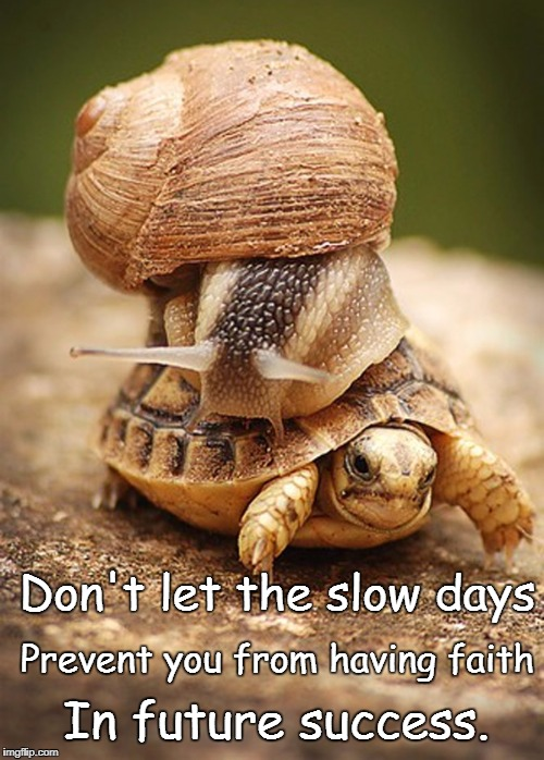 Slow Day | Don't let the slow days In future success. Prevent you from having faith | image tagged in slow day | made w/ Imgflip meme maker