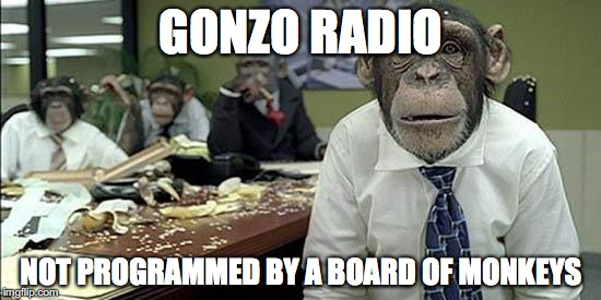 Office monkeys | GONZO RADIO NOT PROGRAMMED BY A BOARD OF MONKEYS | image tagged in office monkeys | made w/ Imgflip meme maker