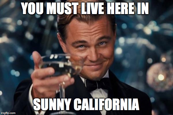 Leonardo Dicaprio Cheers Meme | YOU MUST LIVE HERE IN SUNNY CALIFORNIA | image tagged in memes,leonardo dicaprio cheers | made w/ Imgflip meme maker