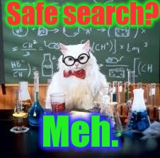 Safe search? Meh. | made w/ Imgflip meme maker