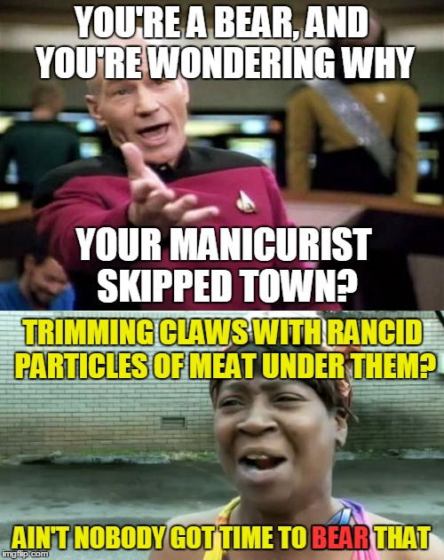 YOU'RE A BEAR, AND YOU'RE WONDERING WHY AIN'T NOBODY GOT TIME TO BEAR THAT YOUR MANICURIST SKIPPED TOWN? TRIMMING CLAWS WITH RANCID PARTICLE | made w/ Imgflip meme maker