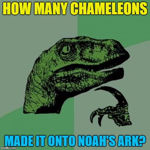 Saw this and thought I'd share :) | HOW MANY CHAMELEONS MADE IT ONTO NOAH'S ARK? | image tagged in memes,philosoraptor,noah's ark,animals,chameleons | made w/ Imgflip meme maker