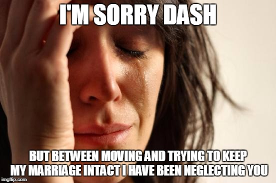 First World Problems Meme | I'M SORRY DASH BUT BETWEEN MOVING AND TRYING TO KEEP MY MARRIAGE INTACT I HAVE BEEN NEGLECTING YOU | image tagged in memes,first world problems | made w/ Imgflip meme maker