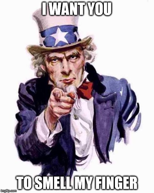 I WANT YOU TO SMELL MY FINGER | image tagged in uncle sam | made w/ Imgflip meme maker