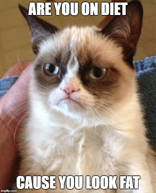 Grumpy Cat Meme | ARE YOU ON DIET CAUSE YOU LOOK FAT | image tagged in memes,grumpy cat | made w/ Imgflip meme maker