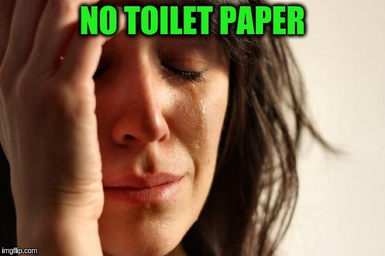 First World Problems Meme | NO TOILET PAPER | image tagged in memes,first world problems | made w/ Imgflip meme maker