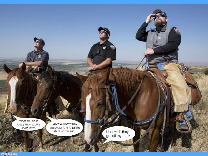 My Last Eclipse Joke | . | image tagged in eclipse,funny,horses | made w/ Imgflip meme maker