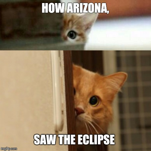 Kittyclipse | HOW ARIZONA, SAW THE ECLIPSE | image tagged in kittyclipse,solarmeow,azeclpise,solareclipse,celestialpurr | made w/ Imgflip meme maker