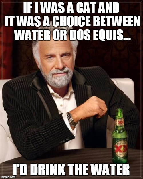 The Most Interesting Man In The World Meme | IF I WAS A CAT AND IT WAS A CHOICE BETWEEN WATER OR DOS EQUIS... I'D DRINK THE WATER | image tagged in memes,the most interesting man in the world | made w/ Imgflip meme maker