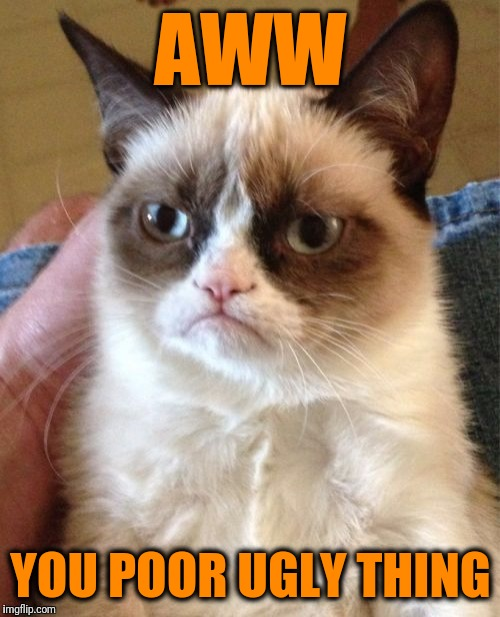 Grumpy Cat Meme | AWW YOU POOR UGLY THING | image tagged in memes,grumpy cat | made w/ Imgflip meme maker