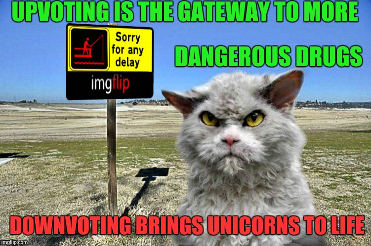 Reverse Psychology for the Newbies | UPVOTING IS THE GATEWAY TO MORE DOWNVOTING BRINGS UNICORNS TO LIFE DANGEROUS DRUGS | image tagged in imgflip sorry with pompous cat,grumpy cat reverse,downvote fairy | made w/ Imgflip meme maker