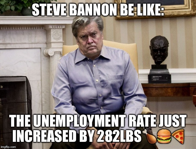Steve Bannon  | image tagged in steve bannon,unemployment | made w/ Imgflip meme maker