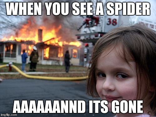 Disaster Girl Meme | WHEN YOU SEE A SPIDER AAAAAANND ITS GONE | image tagged in memes,disaster girl | made w/ Imgflip meme maker