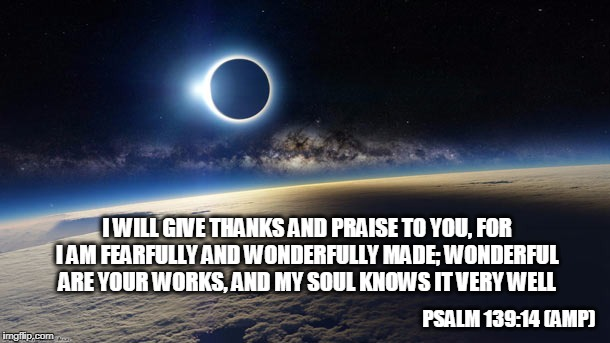 Psalm 139:14 (Amp) | I WILL GIVE THANKS AND PRAISE TO YOU, FOR I AM FEARFULLY AND WONDERFULLY MADE; WONDERFUL ARE YOUR WORKS, AND MY SOUL KNOWS IT VERY WELL PSAL | image tagged in bible,scripture,holy bible | made w/ Imgflip meme maker