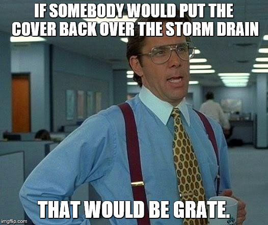 That Would Be Great Meme | IF SOMEBODY WOULD PUT THE COVER BACK OVER THE STORM DRAIN THAT WOULD BE GRATE. | image tagged in memes,that would be great,bad puns | made w/ Imgflip meme maker