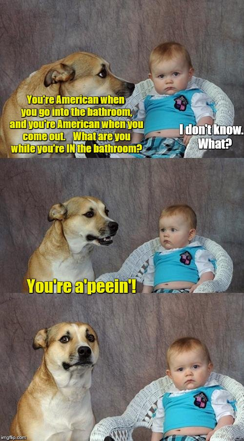 Dad Joke Dog Meme | You're American when you go into the bathroom, and you're American when you come out.    What are you while you're IN the bathroom? You're a | image tagged in memes,dad joke dog,bad puns,bathroom | made w/ Imgflip meme maker