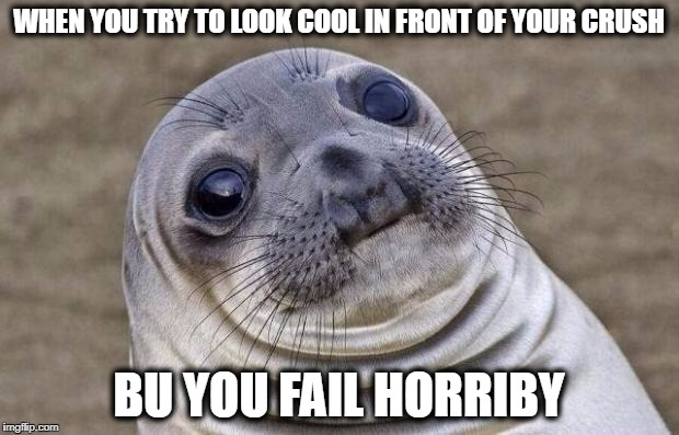 Awkward Moment Sealion Meme | WHEN YOU TRY TO LOOK COOL IN FRONT OF YOUR CRUSH BU YOU FAIL HORRIBY | image tagged in memes,awkward moment sealion | made w/ Imgflip meme maker