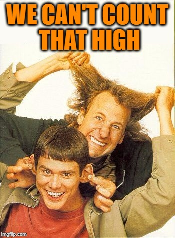DUMB and dumber | WE CAN'T COUNT THAT HIGH | image tagged in dumb and dumber | made w/ Imgflip meme maker
