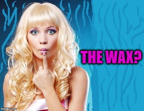ditzy blonde | THE WAX? | image tagged in ditzy blonde | made w/ Imgflip meme maker