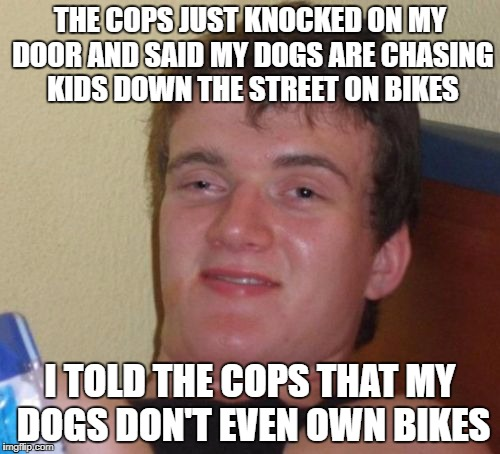 Dogs on Bikes...Yippee | THE COPS JUST KNOCKED ON MY DOOR AND SAID MY DOGS ARE CHASING KIDS DOWN THE STREET ON BIKES I TOLD THE COPS THAT MY DOGS DON'T EVEN OWN BIKE | image tagged in memes,10 guy | made w/ Imgflip meme maker