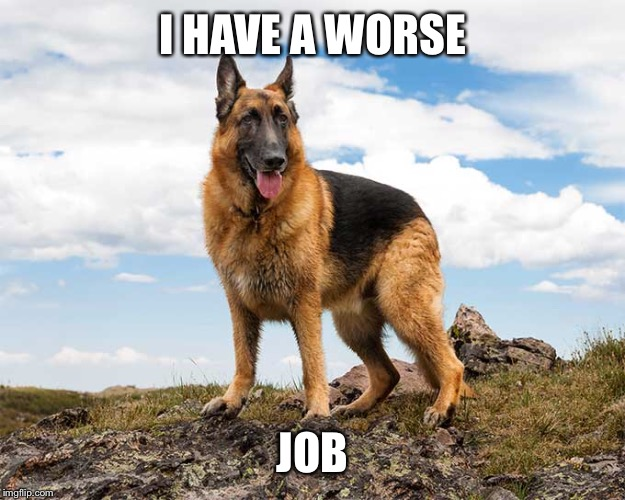 I HAVE A WORSE JOB | made w/ Imgflip meme maker