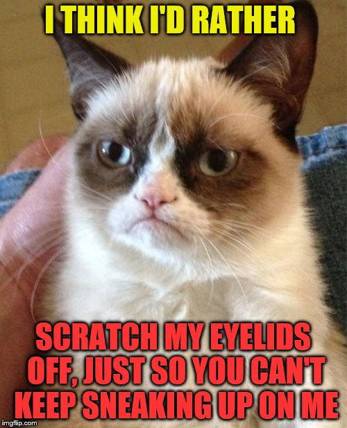 Grumpy Cat Meme | I THINK I'D RATHER SCRATCH MY EYELIDS OFF, JUST SO YOU CAN'T KEEP SNEAKING UP ON ME | image tagged in memes,grumpy cat | made w/ Imgflip meme maker