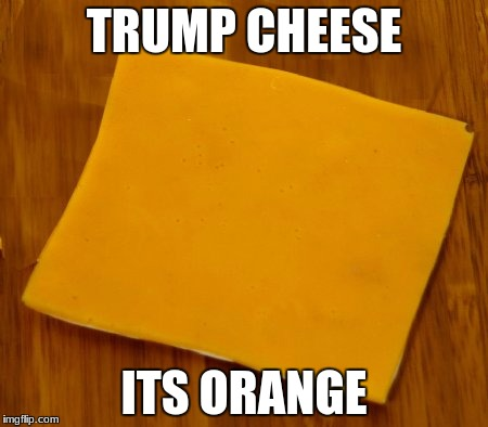 does this make sense | TRUMP CHEESE ITS ORANGE | image tagged in memes,trump,cheese | made w/ Imgflip meme maker