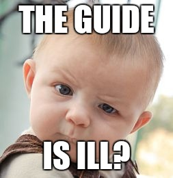 Skeptical Baby Meme | THE GUIDE IS ILL? | image tagged in memes,skeptical baby | made w/ Imgflip meme maker