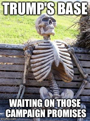 Waiting Skeleton Meme | TRUMP'S BASE WAITING ON THOSE CAMPAIGN PROMISES | image tagged in memes,waiting skeleton | made w/ Imgflip meme maker