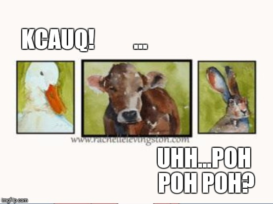 KCAUQ!         ... UHH...POH POH POH? | made w/ Imgflip meme maker